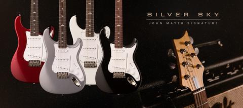 PRS_John_Mayer_Signature_silver_sky.jpg