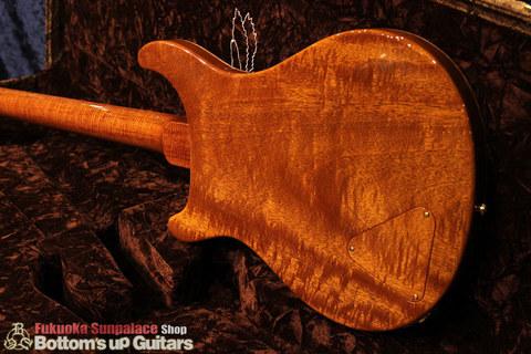 PS#7667_McCartySH_DoubleHole_ViolinAmber_bodyback3.jpg
