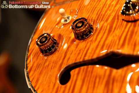 PS#7667_McCartySH_DoubleHole_ViolinAmber_control.jpg