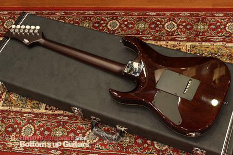 Ts_Guitars_DST-Pro24_Mahogany_Limited_SafariBurst_Honduras_BackMain.jpg
