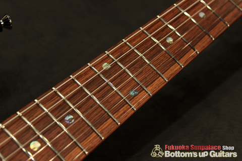 Ts_Guitars_DST-Pro24_Mahogany_Limited_SafariBurst_Hondurasrosewood_Jescar.jpg