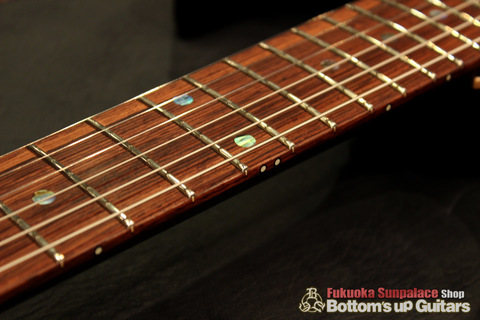Ts_Guitars_DST-Pro24_Mahogany_Limited_SafariBurst_Hondurasrosewood_Luminlay.jpg