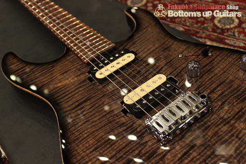 Ts_Guitars_DST-Pro24_Mahogany_Limited_SafariBurst_PU_DH250.jpg