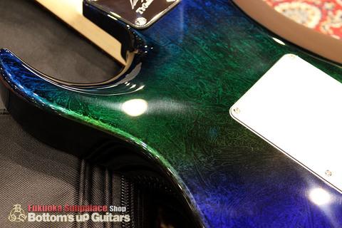 Ts_Guitars_DSTC22R_Flare_Flourite_Back_Finish04.jpg