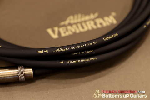 AlliesVEMURAM_cable_2.jpg