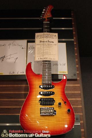 店頭ギターの巡回管理 弦交換 Provision, Ts Guitars, SAITO Guitars, FCGR, Dragonfly.