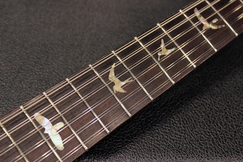 Cu22_12Strings_Bird.jpg