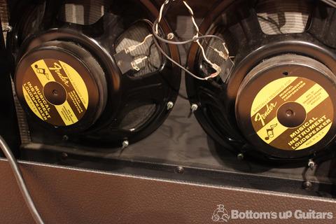 Fender_65Twin_Reverb_Speaker.jpg