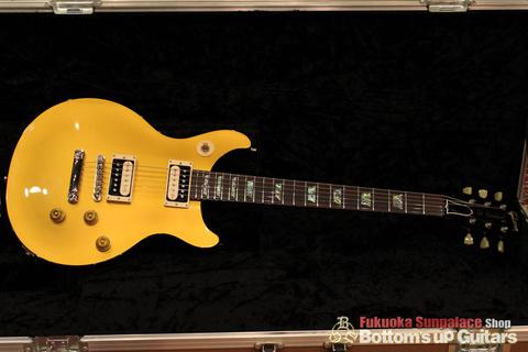 Gibson_TAK_DC_Goldtop_Case.jpg
