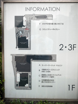 P1080487.jpg