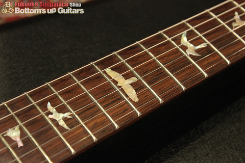 SANTANA_Brazilian_orange_fingerboard.jpg