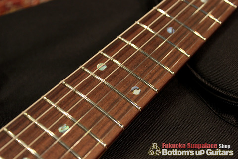 Ts_Guitars_DSTC22R_Flare_Flourite_Rosewood_FB.jpg